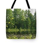 Mew Lake Algonquin Park Tote Bag