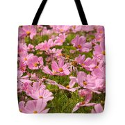 Mexican Aster Flowers 1 Tote Bag