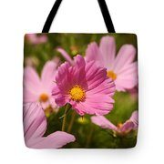 Mexican Aster Flowers 2 Tote Bag