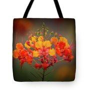 Mexican Bird Of Paradise Tote Bag
