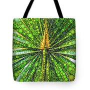 Mexican Fan Palm Leaf Tote Bag