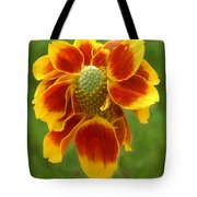 Mexican Hat Dance Finale Tote Bag