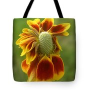 Mexican Hat Dance Tote Bag