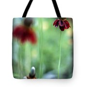 Mexican Hat Flower Tote Bag