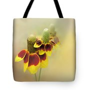 Mexican Hat II Tote Bag
