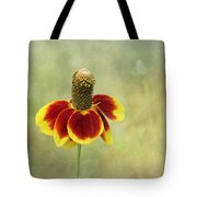 Mexican Hat IIi Tote Bag