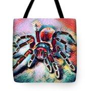 Mexican Red Knee Tarantula Tote Bag