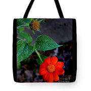 Mexican Sunflower 2 Tote Bag