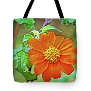 Mexican Sunflower Along White Pine Trail In Kent County, Michigan  Tote Bag