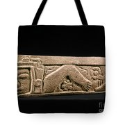 Mexico: Totonac Swimmer Tote Bag