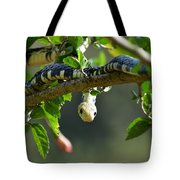 Mica On The Hunt Tote Bag