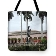 Michelangelo's David Tote Bag
