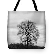 Michigan Lonley Tree  Tote Bag