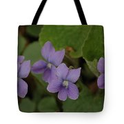 Michigan Purple Spring Flowers Tote Bag