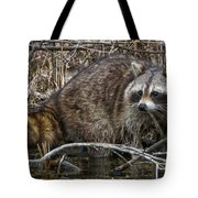 Michigan Raccoon Tote Bag