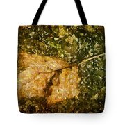 Microcosm Of Fall Tote Bag
