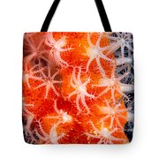 Micronesia, Marine Life Tote Bag