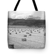 Mid June Colorado Hay  And The Twin Peaks Longs And Meeker Bw Tote Bag