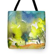 Midday 14 Tote Bag