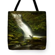 Middle Bridal Veil Falls Tote Bag