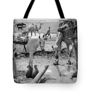 Middle East: Water, C1932 Tote Bag