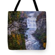 Middle Falls Letchworth State Park Tote Bag by Dick Wood