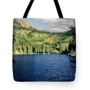 Middle Fork Lake Tote Bag