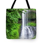 Middle North Falls 2 Tote Bag