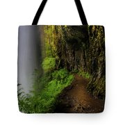 Middle North Falls Grotto Tote Bag