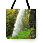 Middle North Falls Tote Bag