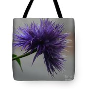 Midnight Blue 16-01 Tote Bag