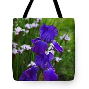 Midnight Flame Tote Bag
