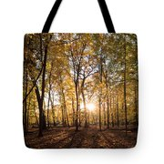 Midwest Forest Tote Bag