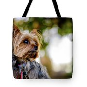 Mighty Dog Tote Bag