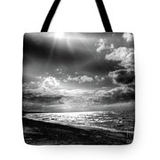 Catching The Light Of A Dream Tote Bag
