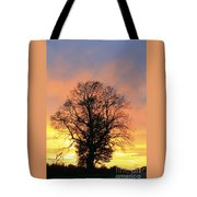 Mighty Oak At Sunset Tote Bag