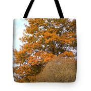 Mighty Oak In Autumn Tote Bag