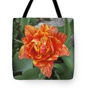 Mike's Hybrid Tulip Tote Bag