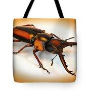 Military Stag Beetle Tote Bag