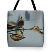 Milk Weed Pods In Snow Tote Bag