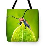 Milkweed Beetle Tote Bag