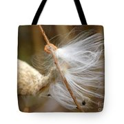 Milkweed Feathers Tote Bag