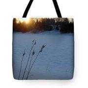 Milkweed Stems Winter Sunrise Tote Bag