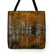 Mill Pond Reflections Tote Bag