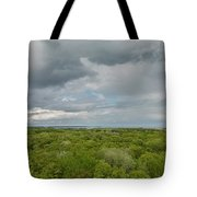 Mille Lacs Tower View 1 Tote Bag