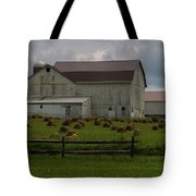 089 Millersburg Ohio Tote Bag