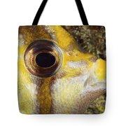 Milletseed Butterflyfish Tote Bag