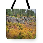 Million Dollar Highway Fall Color Tote Bag