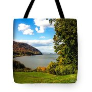 Million Dollar View Tote Bag