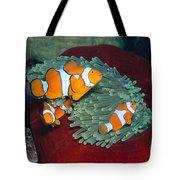 Milne Bay, Marine Tote Bag